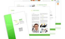BSP Company Profile