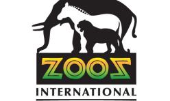 Zooz International