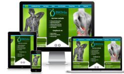 Chiropractic Website Design Sydney