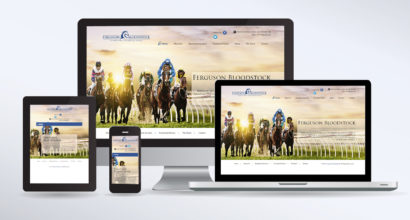 Bloodstock Website Design